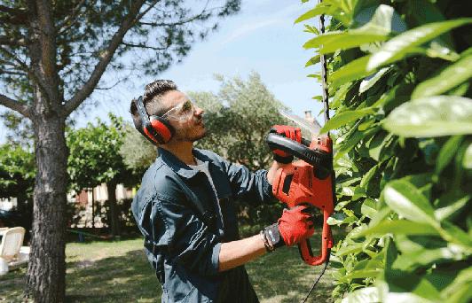 trea garden potatura siepi