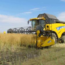 trebbiatura tre A agricoltura vendita e noleggio materiale e mezzi agricoli