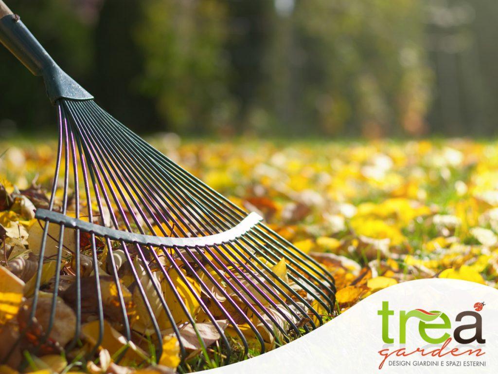 raccolta delle foglie