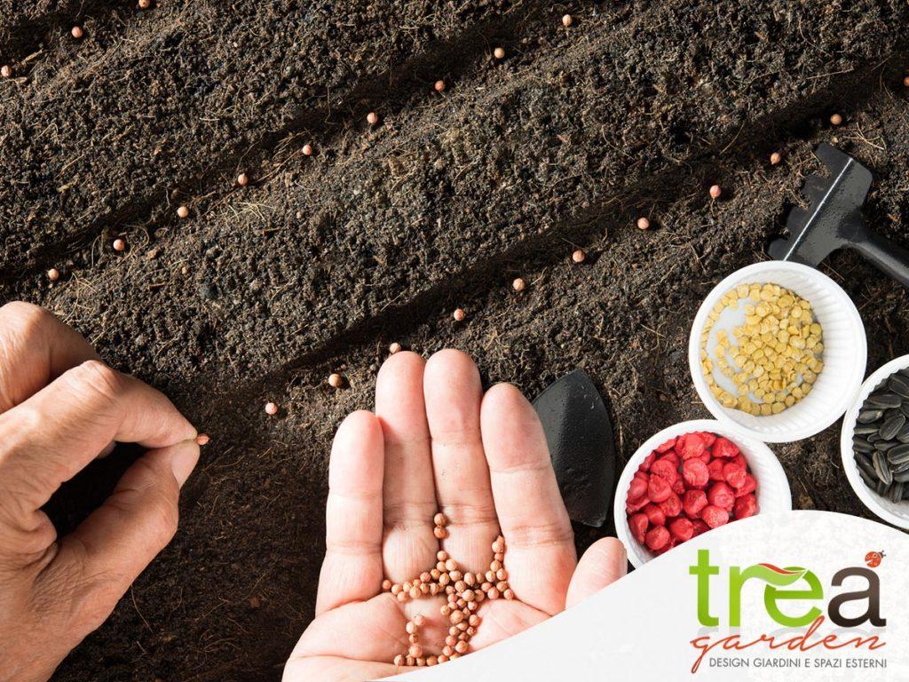 semina finocchio e radicchio tre a garden e pet store